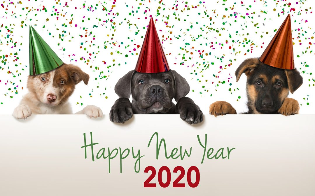 Happy 2020 From Ray